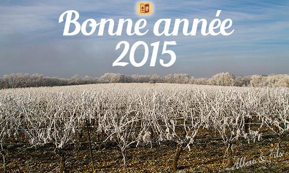 Meilleurs voeux 2015 de la part du Domaine de Labarthe